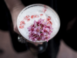 Cherry Blossom Cocktail Recipe: Blossomtini at Melrose Georgetown Hotel