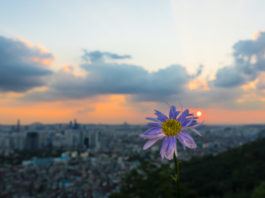 You Should Visit Seoul for Nature and Culture